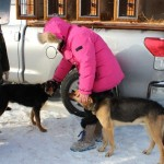 Musher Amber Evans, of Milaca, Minnesota, with two of her dogs