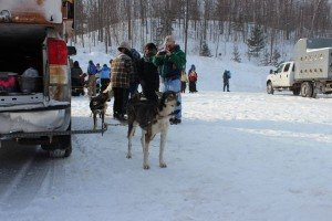 UP 200 Marquette, Michigan Dog Sled Race