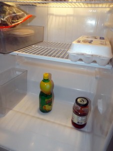 The dreary contents of my fridge.