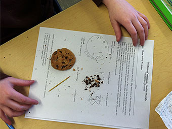 "Gwinn Area Community Schools 3rd Grade Students learn about mining by ""mining"" chocolate chip cookies."