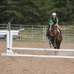 Tatum and her chestnut jumping in the horse show on Saturday August 15th 2015, Marquette County Fair