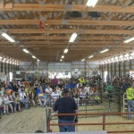 Full view of the barn during the livestock auction and GLR's Win the Meat Giveaway 2015