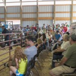 People loved the Livestock Auction at the Marquette County Fair 2015!