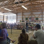 One of the sales during the auction at the Marquette County Fair 2015
