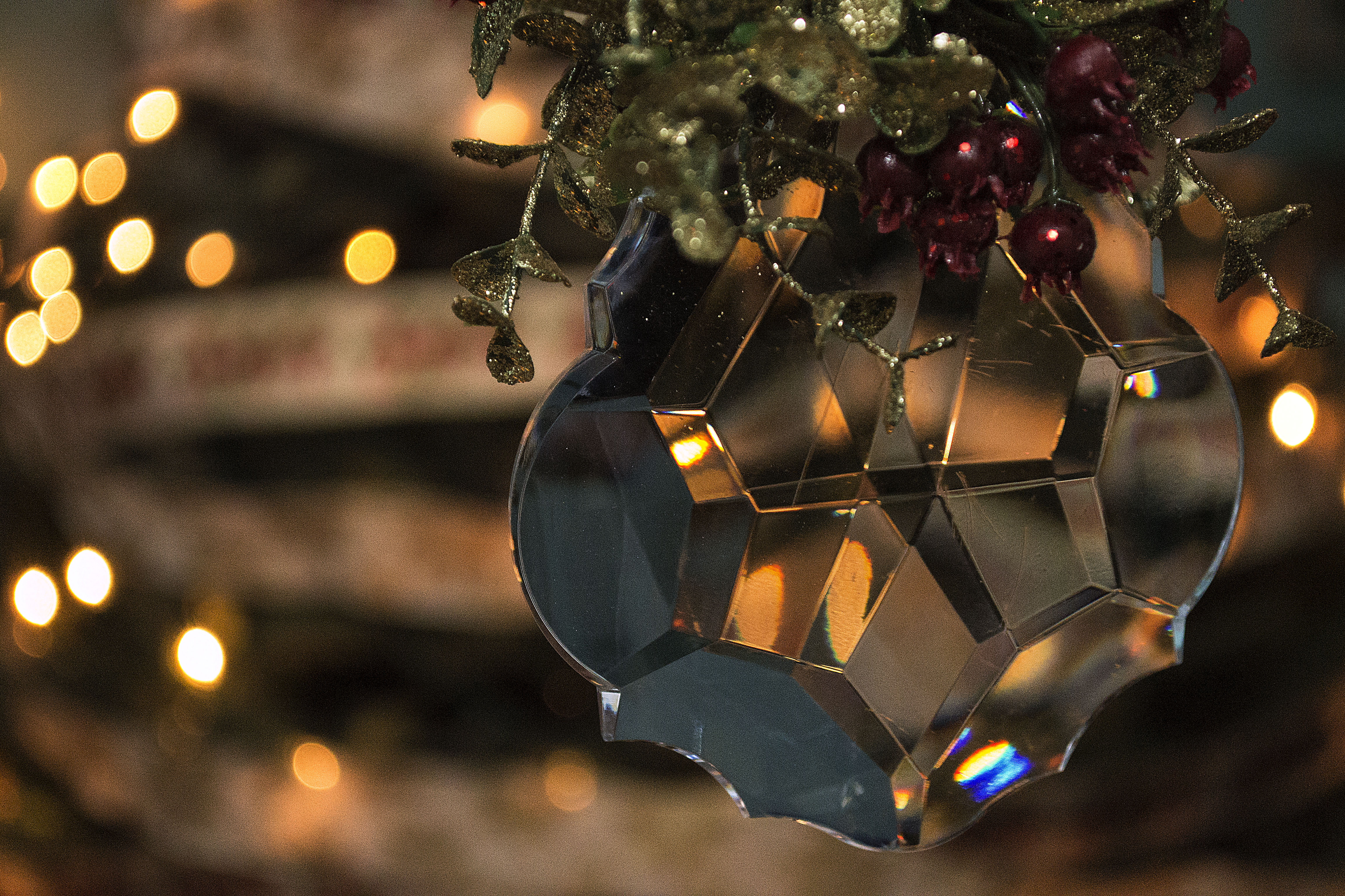 Get in the Christmas Spirit! Photo by Saddleback Photography