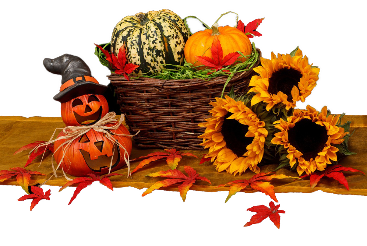 halloween, harvest, autumn