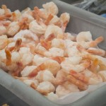 We had shrimp just like these, and they were great!