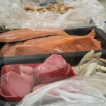 Salmon and Tuna were among the options during the fish sale