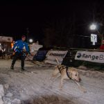 While waiting for the Midnight Run to start, we got a skijoring demo!