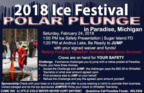 Polar Plunge at Paradise Ice Festival 2018 - Saturday February 24th