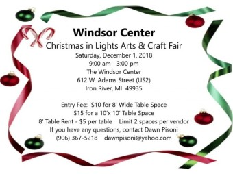 Dawn Pisoni 8th Day Interview - Christmas in Lights Craft Show at Windsor Center December 1st Iron River Michigan