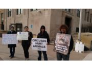 Animal–Free Circus Marquette Protesters on the 8th Day Radio Show