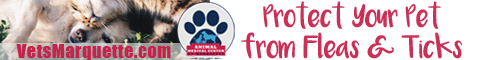 Protect Your Pets From Fleas and Ticks With AMC