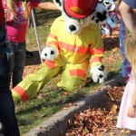 Look at that fire dog go!