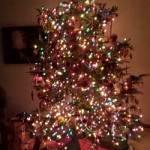 Our tree in all of it's glory on December 24th.