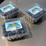 16th Annual Marquette Blueberry Festival in Downtown Marquette, MI