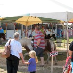 Pony Rides at the Marquette County Fair