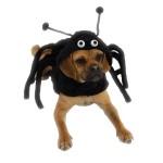 Picture by Fabulous Pet Store. (http://www.fabulouspetstore.com/files/1824502/uploaded/ZA641CasualCanineSpiderDogCostume3.JPG)