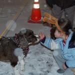Dog Meets Max