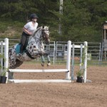 Leopard Appy jumping in the Marquette County Fair horse show 2015