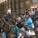 Crowds of people biding on the steers during the Livestock Auction 2015