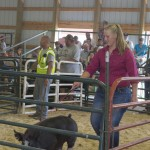 Shelby Talsma showing her pig during the Marquette County Fair Livestock Sale 2015