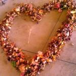 Autumn Heart in Hermansville Michigan photo by Nancy Longtine