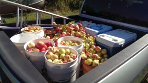 The truck filled up last fall
