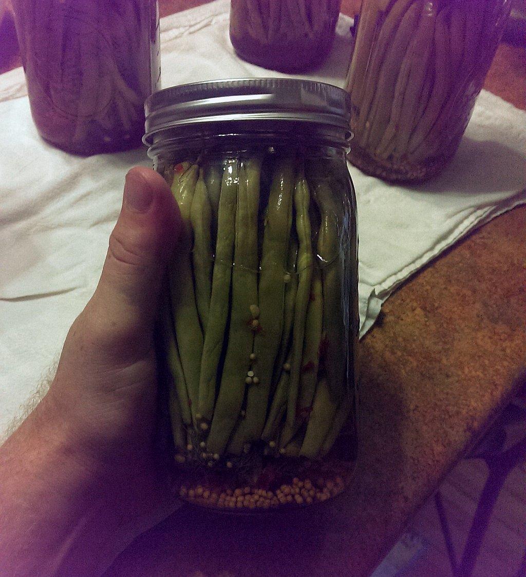 Delicious DIY Dill Beans