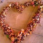 feature Autumn Heart in Hermansville Michigan photo by Nancy Longtine
