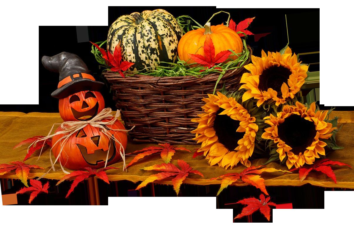 halloween, harvest, autumn