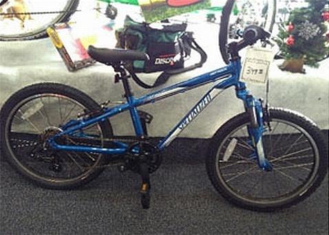 brampton bike and ski blue specialized bike