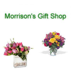 Morrison's Gift Shop Ishpeming Michigan
