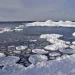 Ice lily pods on Lake Superior at Presque Isle Park in Marquette, MI - Photo by Jessica Wells.