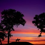 An amazing sunset silhouette from Right Start Photography