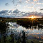 Star burst over the Arcadia Marsh in Arcadia, MI - Jessica Dobbs - Intrique Photography