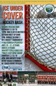 The Marquette Township Events Committee presents: Ice Under Cover!