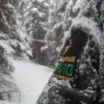 Van Riper State Park Lantern Lit Snowshoe Trail View