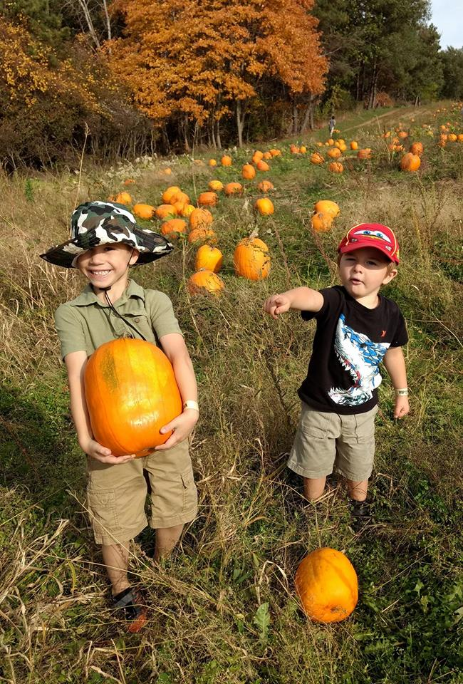 Holden and Titan picking out pumpkins to carve, The Sunny Morning Show