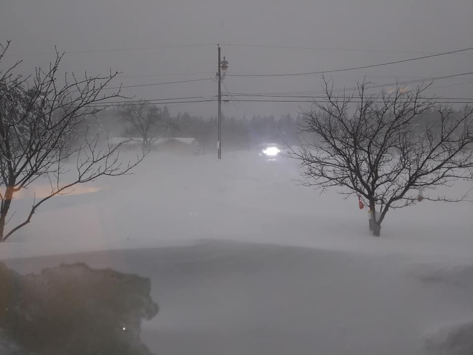 The view outside of Kelsey's front window
