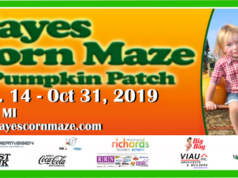 Hayes Corn Maze is open September 14 - October 31