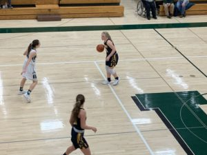 Larissa Anderson dribbles the ball up the court for Negaunee in its 30-point win over the Manistique Emeralds.