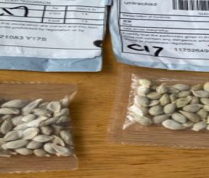 MDARD Issues Advisory Regarding Unsolicited Packages of Seeds from China July 27, 2020