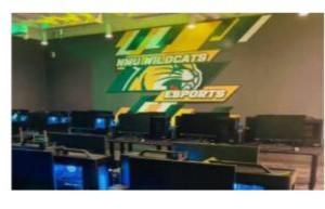 NMU Esports Adapts to COVID-19 January 20, 2021